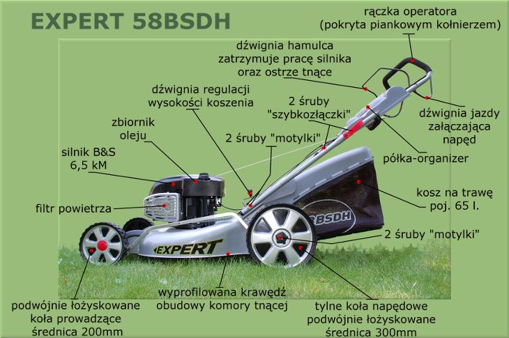 Expert 58BSDH